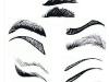eye-brows